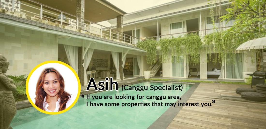 Asih (Canggu Spesialist Property Consultant)