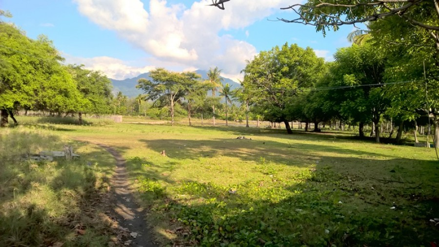 Absolute Beachfront Land At Buleleng For Sale
