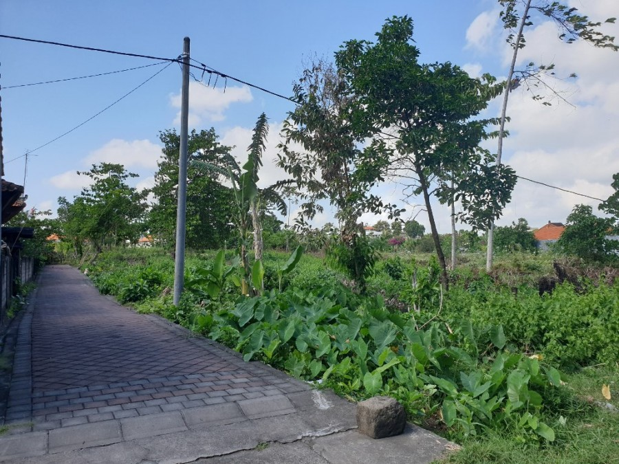 Plots Suitable For Villa or House in Umalas