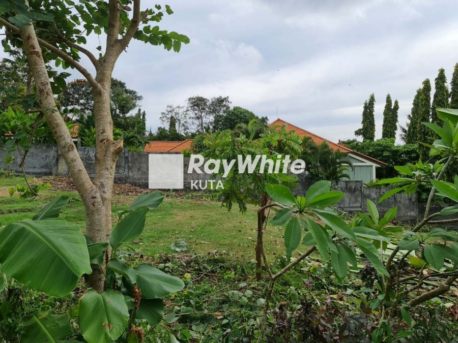 Rare Land In Pererenan Close To The Beach