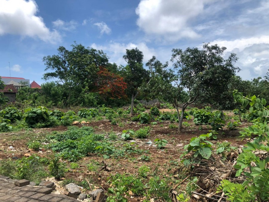 Land For Sale Located In Bali Cliff Ungasan