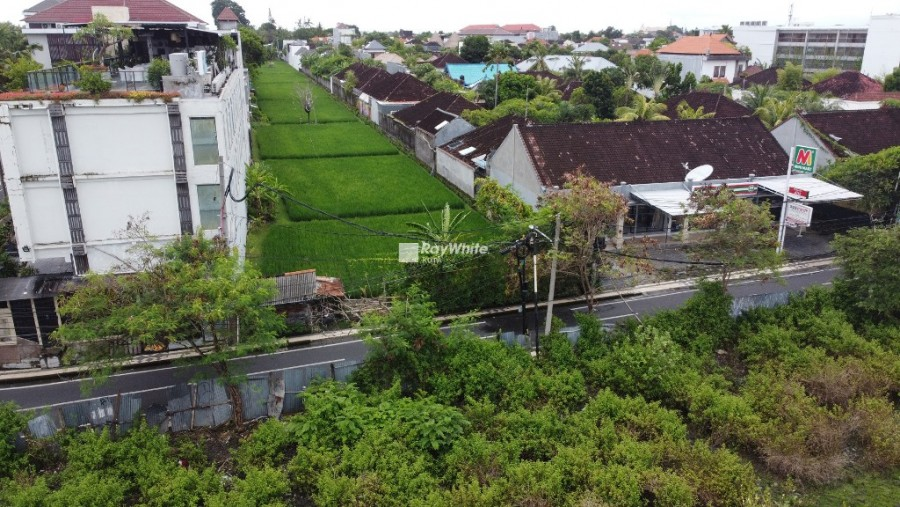 Rare Listing!!! Rice Field View Land For Sale In Seminyak
