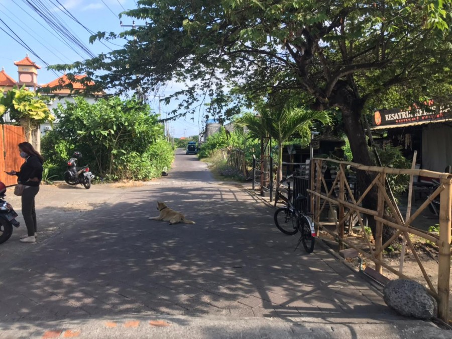 Lodging House For Sale In Sunet Road Kuta