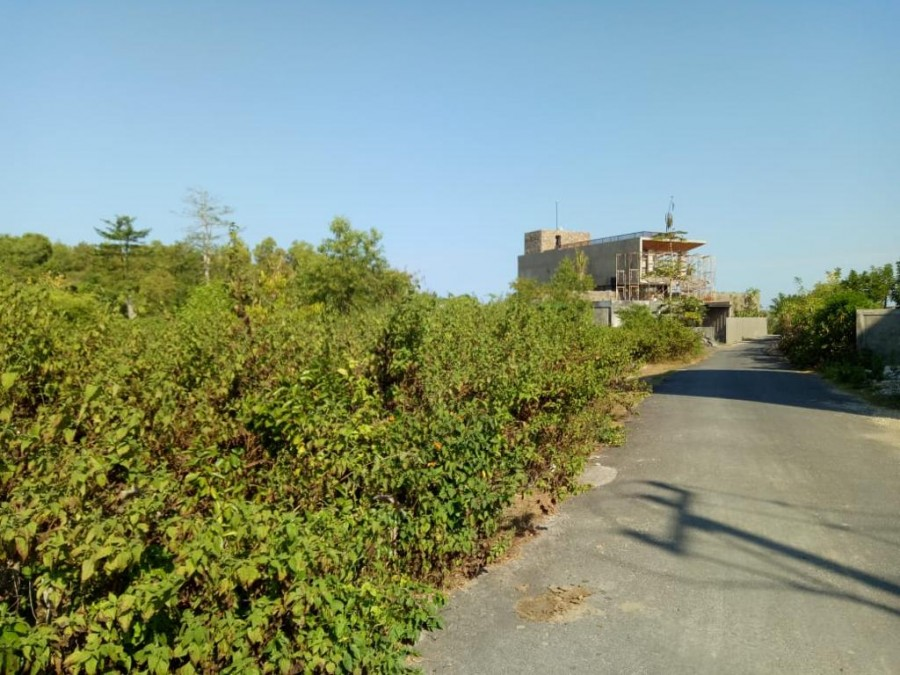 Sea View Land For Sale In Melasti Near Banyan Tree Resort
