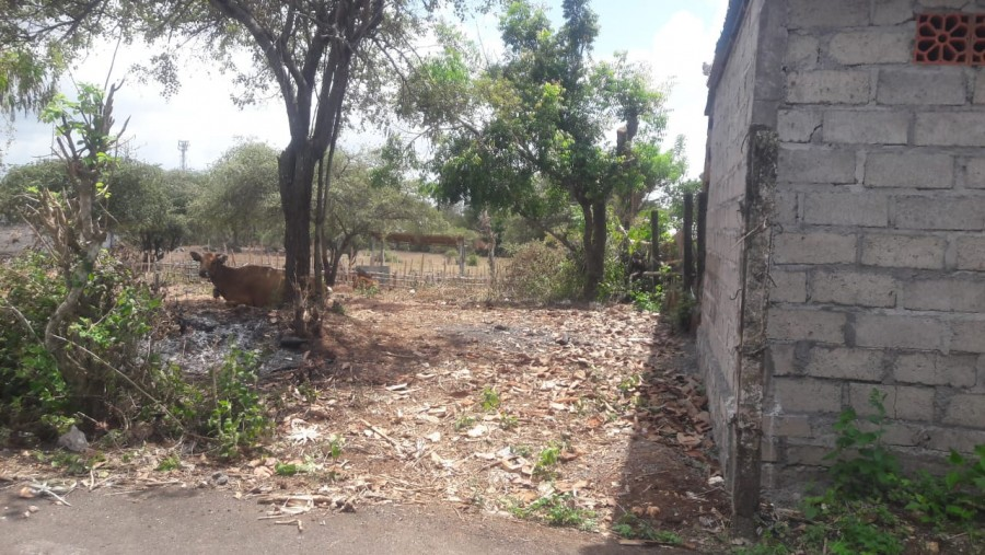 400m2 Land For Sale In Kutuh